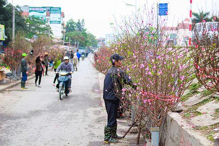 Nhung sac hoa Tet ngap tran pho phuong Ha Noi - Anh 1