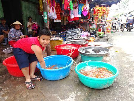 TP.HCM: Nguoi dan do xo di mua vang ma, ca chep chuan bi tien ong Tao - Anh 2