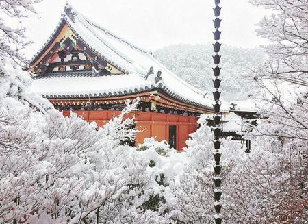 Ngam Kyoto dep nhu co tich mua tuyet roi - Anh 15