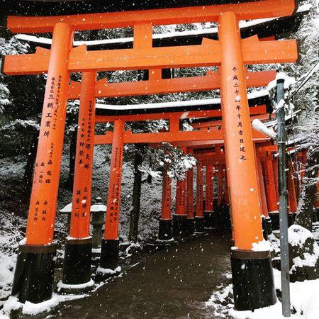 Ngam Kyoto dep nhu co tich mua tuyet roi - Anh 22