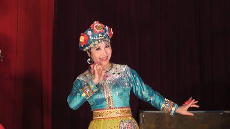Hat chau van lan dau 'len song' tai hoi cho hoa xuan - Anh 1