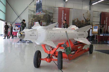 Tien bo vuot bac: Viet Nam che tao linh kien ten lua X-29 - Anh 1