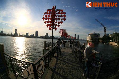 Chiem nguong cau Tinh yeu Da Nang cuc hot dip Valentine - Anh 10