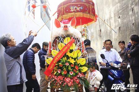 'Ong lon' mac 'ao choang' mo mang duoc ruoc khap lang La Phu - Anh 1