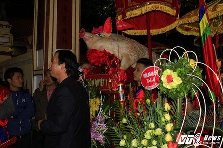 'Ong lon' mac 'ao choang' mo mang duoc ruoc khap lang La Phu - Anh 9
