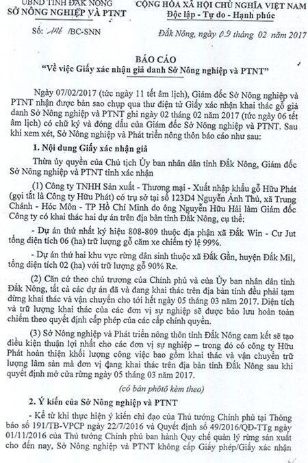 Gia mao giay cua So Nong nghiep de khai thac go trai phep - Anh 1