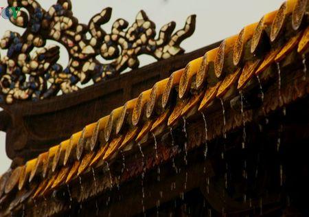 Ly ky chuyen nghiep de duoc bao truoc cua Vua Tran Nghe Tong - Anh 3