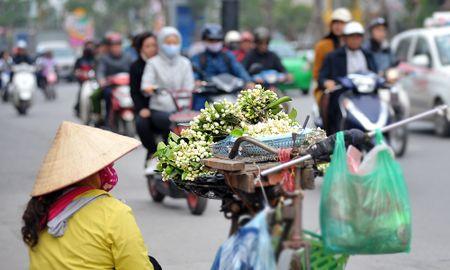 Duong pho Ha Noi ngat huong hoa buoi - Anh 2