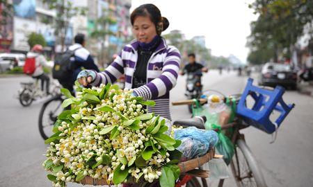 Duong pho Ha Noi ngat huong hoa buoi - Anh 5