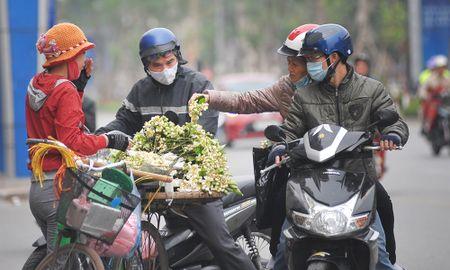 Duong pho Ha Noi ngat huong hoa buoi - Anh 7
