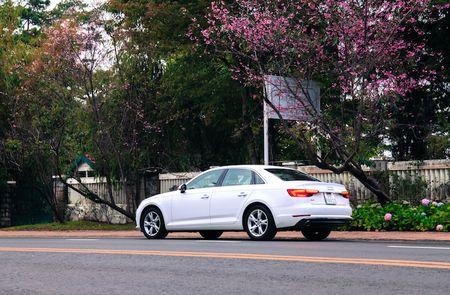 Can canh 'xe sang' Audi A4 gia 1,65 ty tai Da Lat - Anh 9