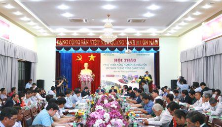 Phat trien nong nghiep Tay Nguyen - goc nhin tu cac nong dan ty phu - Anh 1