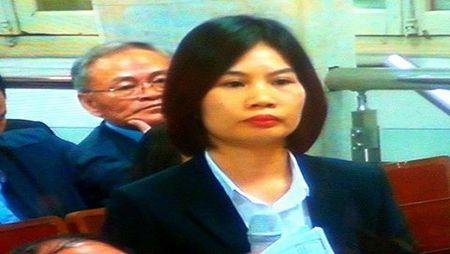 Ha Van Tham khang dinh co bang chung cac ngan hang chi lai ngoai - Anh 2