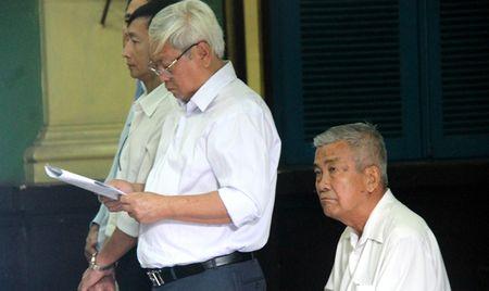 Gay that thoat hang chuc ty dong, dan lanh dao Cong ty Cofidec hau toa - Anh 1