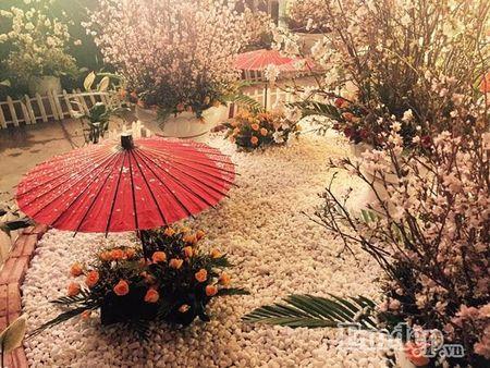 Nguoi dan Ha thanh hao huc thuong lam le hoi hoa anh dao - Anh 14