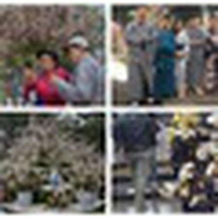 Nguoi dan Ha thanh hao huc thuong lam le hoi hoa anh dao - Anh 16