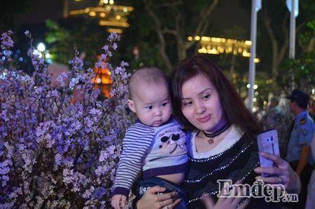 Nguoi dan Ha thanh hao huc thuong lam le hoi hoa anh dao - Anh 7