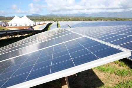 Dien mat troi Tesla giup cu dan Kauai tiet kiem 6 trieu lit dau mo - Anh 1