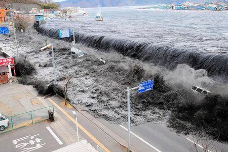 6 nam tham hoa hat nhan Fukushima: Noi dau cua nguoi song sot - Anh 1