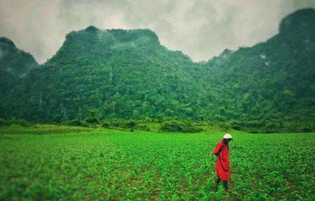 24h ban ron va dang nho cua dao dien 'Kong: Skull Island' tai Viet Nam - Anh 7