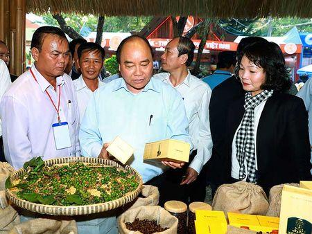 Thu tuong du le hoi ca phe Buon Ma Thuot - Anh 1