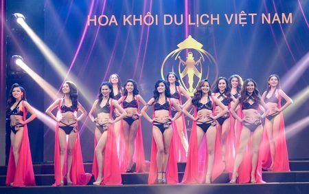 Khanh Ngan The Face dang quang Hoa khoi Du lich Viet Nam - Anh 1