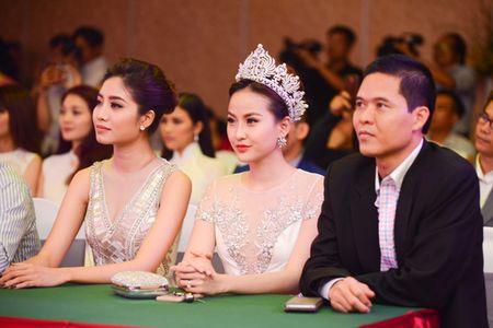 Nhan sac ASEAN lan dau hoi tu o Viet Nam - Anh 1