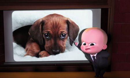 'The Boss Baby' - Bo phim hoat hinh dang yeu se lam tan chay moi con tim - Anh 5