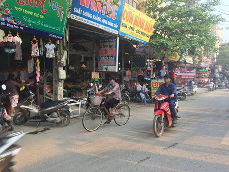 Dong Anh, Ha Noi: Lan chiem via he, long duong de kinh doanh, hop cho - Anh 2