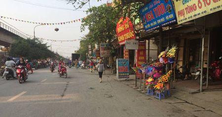 Dong Anh, Ha Noi: Lan chiem via he, long duong de kinh doanh, hop cho - Anh 3
