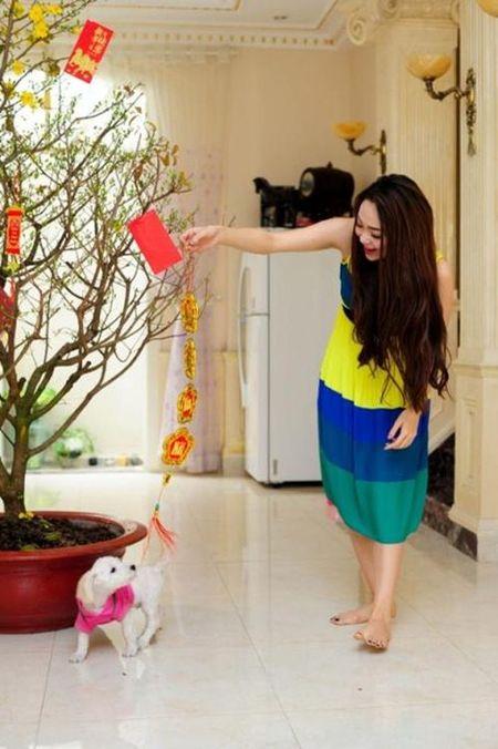 Noi that dep choang vang trong biet thu trieu do cua Minh Hang - Anh 4
