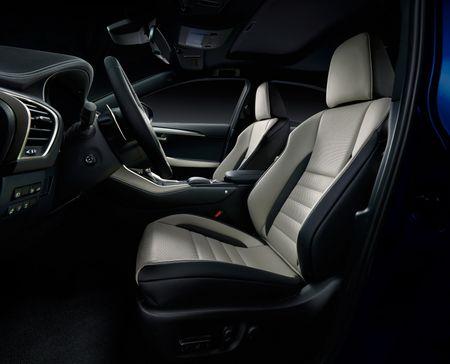 Lexus NX va nhung nang cap moi dang chu y - Anh 11