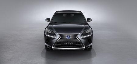 Lexus NX va nhung nang cap moi dang chu y - Anh 6