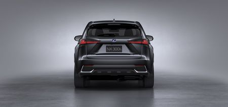 Lexus NX va nhung nang cap moi dang chu y - Anh 8