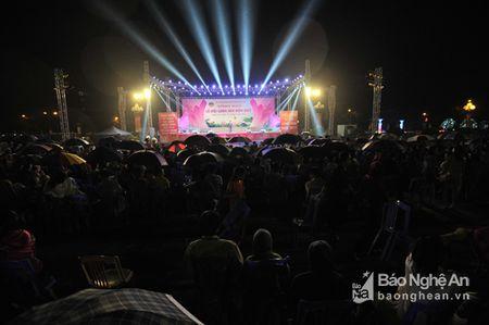 Tong ket Le hoi Lang Sen 2017 - Anh 3