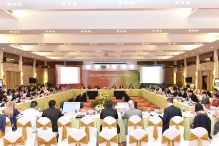 APEC: Chia se kinh nghiem ve linh vuc tai chinh - Anh 1