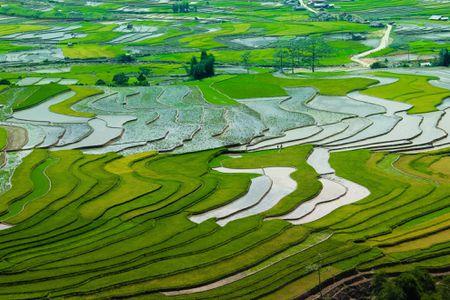 Yen Bai thuc hanh tin nguong tho mau quang ba du lich - Anh 1
