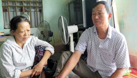Tro lai vu 3.000 cay chuoi bi 'chem guc' o Hai Phong - Anh 2