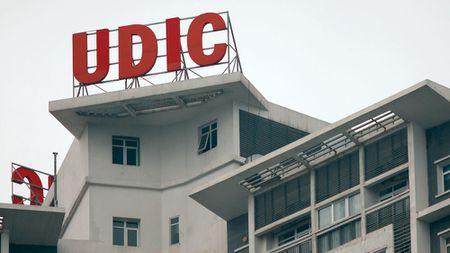 UDIC: Trung thau lon, thong tin map mo - Anh 1