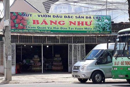 Chu quay 'dac san Da Lat' danh du khach bi phat - Anh 1