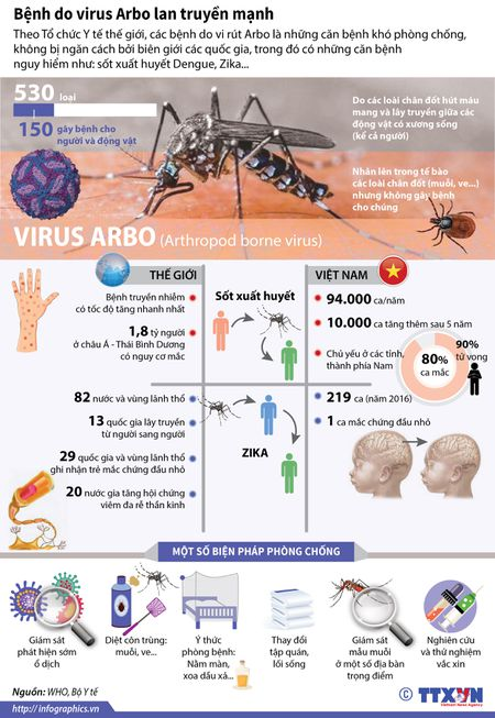 Benh do virus Arbo dang lan truyen manh - Anh 1