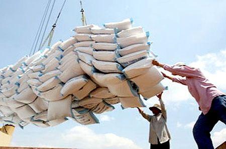 Philippines sap dau thau 250 ngan tan gao - Anh 1