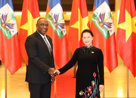 Viet Nam - Haiti uu tien hop tac 4 linh vuc trong tam - Anh 1