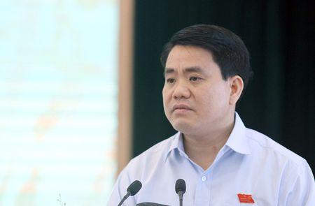 Chu tich Ha Noi: 'Khong the trong xa cu co thu tren cac tuyen pho' - Anh 1