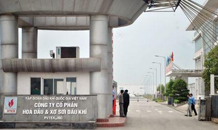 Bat giam 'bo sau' lanh dao Cong ty Xo soi dau khi PVTEX - Anh 1