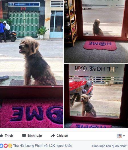 Nhung chuyen khong ngo den tu Facebook - Anh 2