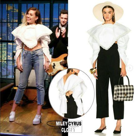 Miley Cyrus so huu nhung trang phuc hang hieu nao trong tu do? - Anh 8