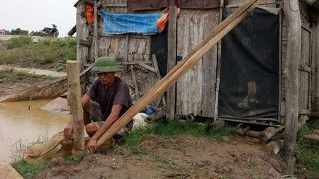 Thanh Hoa san sang so tan gan 250.000 nguoi khoi khu vuc nguy hiem - Anh 2