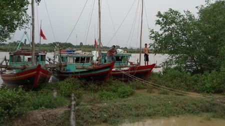 Thanh Hoa san sang so tan gan 250.000 nguoi khoi khu vuc nguy hiem - Anh 3