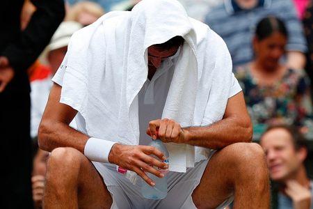 Federer vo dich Wimbledon, gianh danh hieu Grand Slam thu 19 - Anh 6
